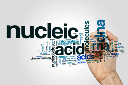 nucleic: Nucleic acid word cloud on grey background Stock Photo