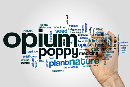Opium word cloud concept on grey background