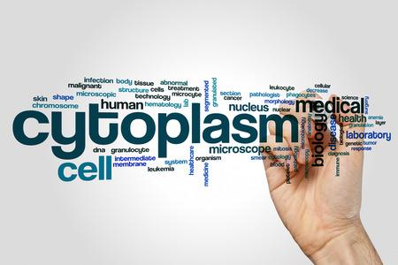 cytology: Cytoplasm word cloud concept on grey background.