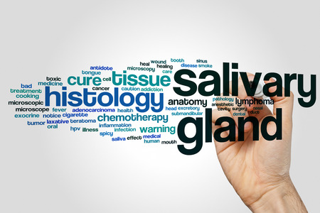 oral cancer: Salivary gland word cloud concept on grey background Stock Photo