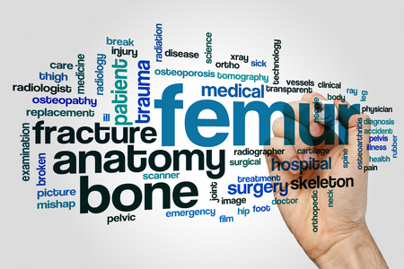 Femur word cloud concept on grey background.