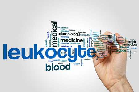 Leukocyte word cloud concept on grey background Stock Photo