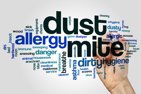Dust mite word cloud concept on grey background.