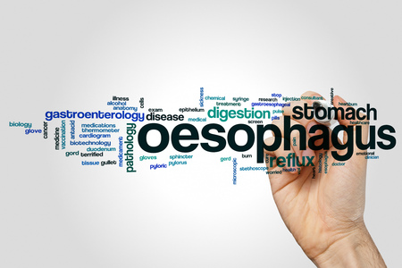 oesophagus: Oesophagus word cloud concept on grey background