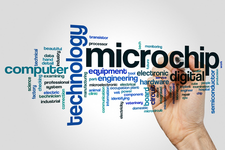 Microchip word cloud concept on grey background