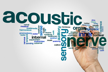 tympanic: Acoustic nerve word cloud concept on grey background.