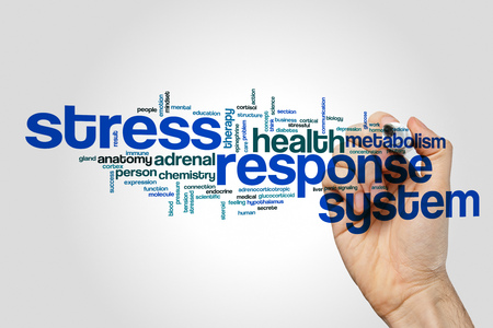 Stress response system word cloud on grey background