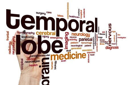 Temporal lobe word cloud concept Stock Photo