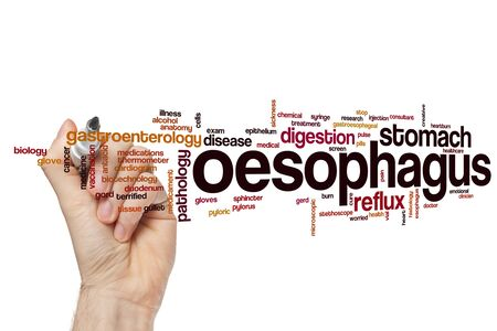 Oesophagus word cloud concept
