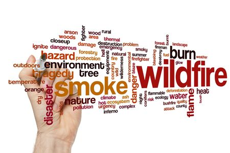 Wildfire word cloud concept