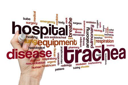Trachea word cloud concept Stock Photo