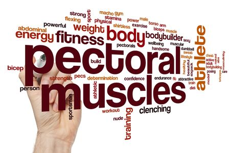 Pectoral muscles word cloud concept