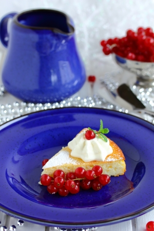 Cottage cheese baked pudding with red currants Stock Photo - 16577809