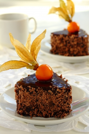 Chocolate cake with chestnuts and winter cherry Stock Photo - 16577810