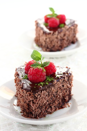 Chocolate cake with chestnuts and raspberries  Stock Photo - 16577800