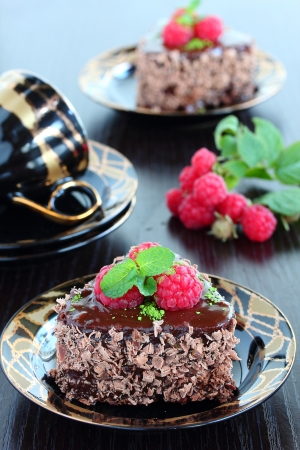 Chocolate cake with chestnuts and raspberries Stock Photo - 16577813