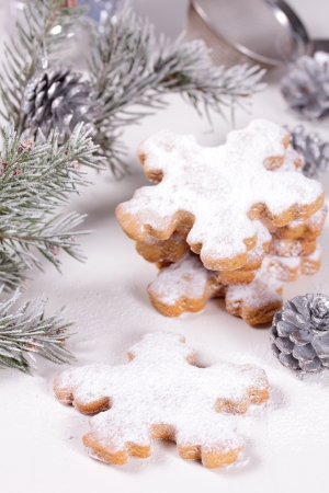 Christmas biscuits  snowflakes  Stock Photo - 16909153