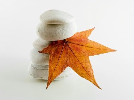 Stone and autum leaf in studio Stock Photo