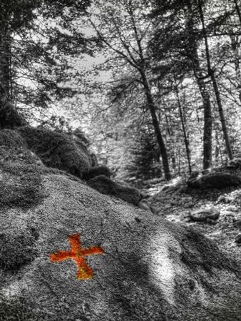 sone: Infrared picture of a trail with a indicating red  cross on rock