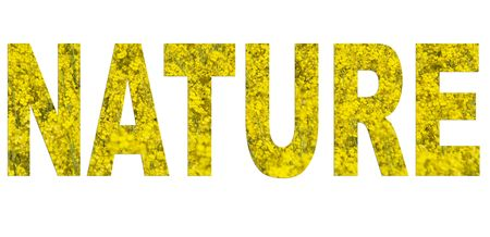 arial: Nature arial font made of rapeseed