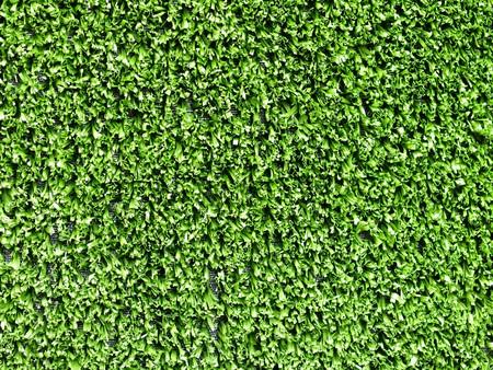 prato sintetico: Macro di uno sfondo di erba sintetica
