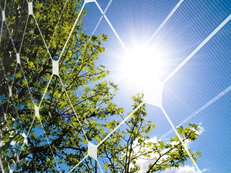 Tree at spring against the sun and photovoltaic panel Stock Photo