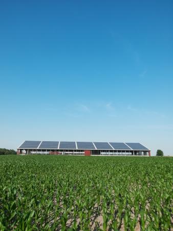 Farm and solar panel