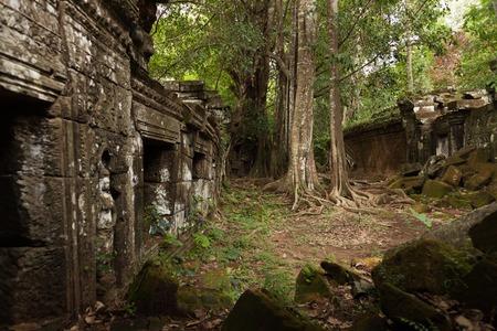 khan: Preah Khan angkorian temple in the jungle