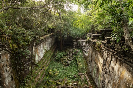 Overgrown jungle in the temple of Beng Mealea near Siem Reap Cambodia