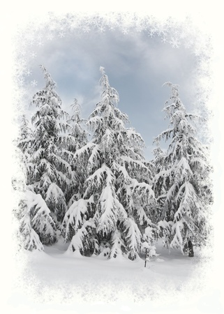 winter wonderland: Winter scenic with snowflakes frame. Christmas card.