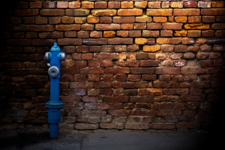 Fire hydrant against a brick wall on a side street  photo