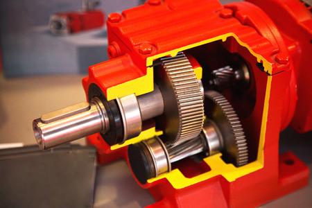 gearbox: Gear wheels of reducer motor .