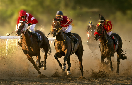 Un día de carreras en el hipódromo de Belgrado Foto de archivo - 81749511