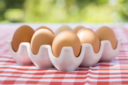Eggs on red checkered tablecloth, Sun light Imagens