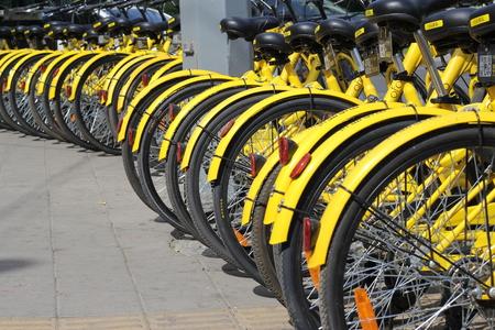 shared: Shared bike OFO