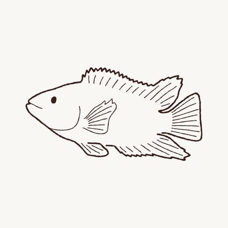 cichlid: Cichlid Fish Cartoon Art