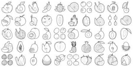 Set Of Fruit Vector Illustration Hand Drawn Cartoon Art Illustration