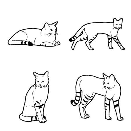African Wild Cat Vector Illustration Hand Drawn Animal Cartoon Art Stock Vector - 125876573
