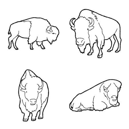 Amerykański bizon wektor ilustracja ręcznie rysowane zwierzę kreskówka sztuka