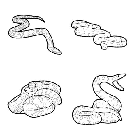 Anaconda Vector Illustration Hand Drawn Animal Cartoon Art