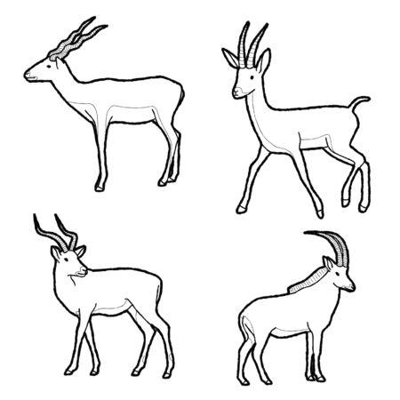 Antelope Animal Vector Illustration Hand Drawn Cartoon Art 일러스트