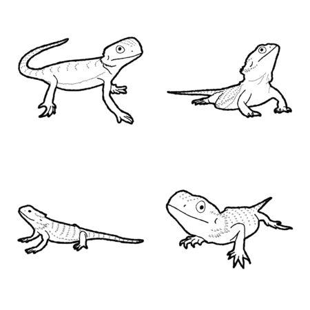 Bearded Dragon Animal Vector Illustration Hand Drawn Cartoon Art Stock Illustratie