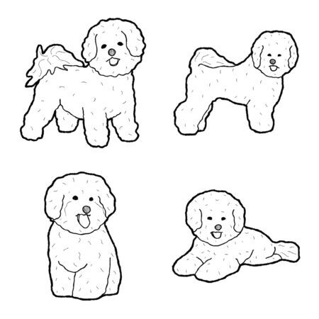 Bichon Frise Animal Vector Illustration Hand Drawn Cartoon Art Illustration