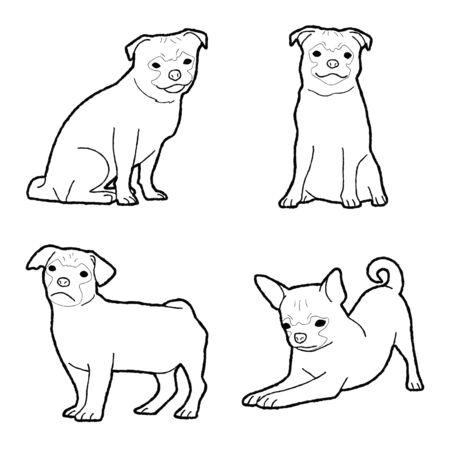 Chug Animal Vector Illustration Hand Drawn Cartoon Art