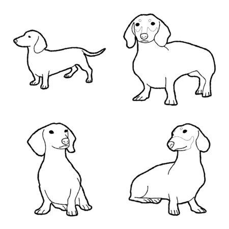 Dachshund Animal Vector Illustration Hand Drawn Cartoon Art