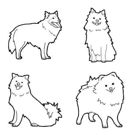 German Spitz Animal Vector Illustration Hand Drawn Cartoon Art