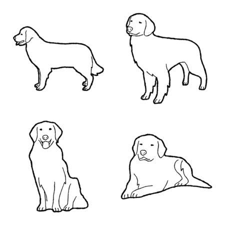 Golden Retriever Animal Vector Illustration Hand Drawn Cartoon Art