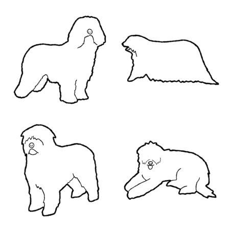 Komondor Animal Vector Illustration Hand Drawn Cartoon Art Illustration