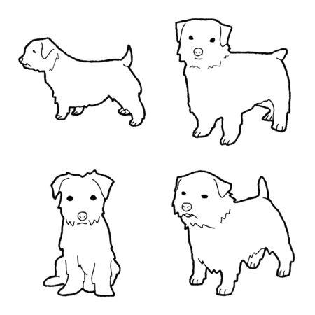 Norfolk Terrier Animal Vector Illustration Hand Drawn Cartoon Art