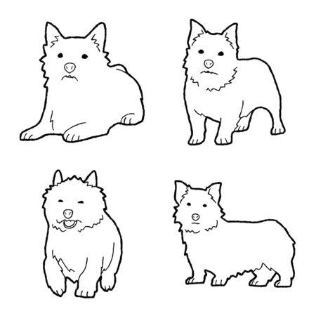 Norwich Terrier Animal Vector Illustration Hand Drawn Cartoon Art Illustration